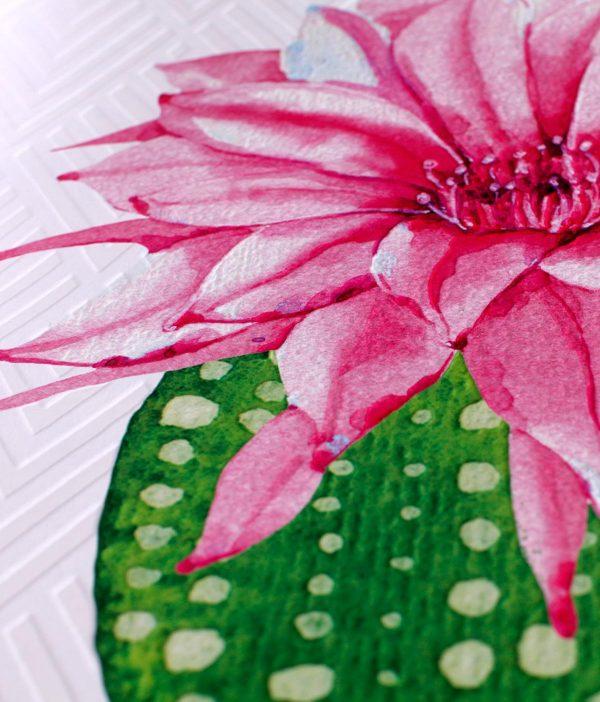 3D fototapete sa reljefom - kaktus