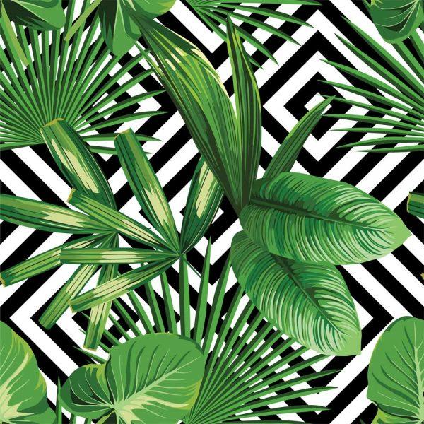 palmice tapeta za zid